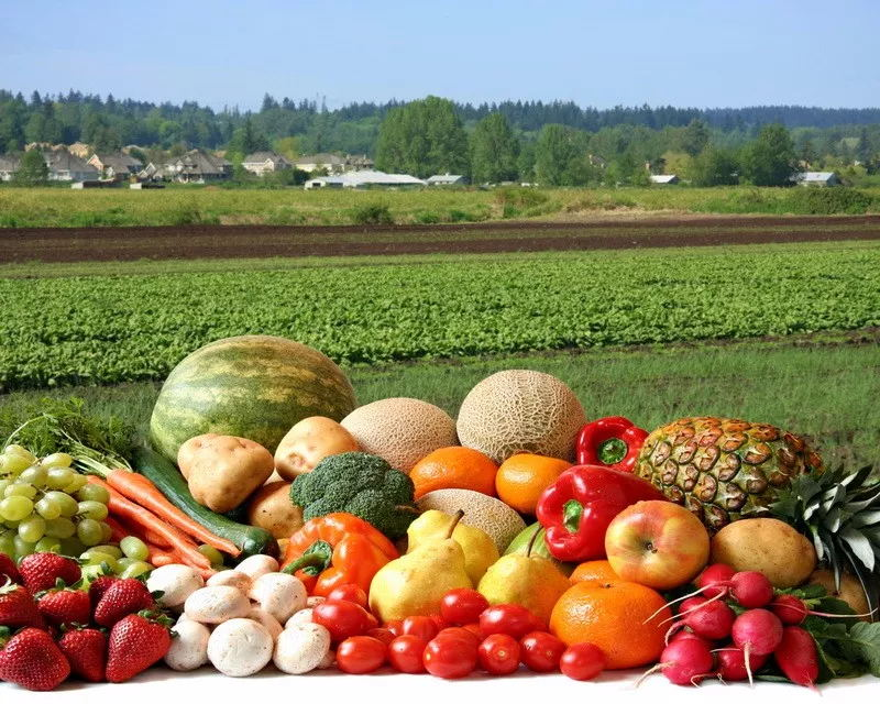 1.Eat organic foods for health benefitsThe industrial insecticides and pesticides used in traditional agriculture are harmful to human health, and they also remain in the food cooking process. These ingredients are the culprits of many allergies, and are